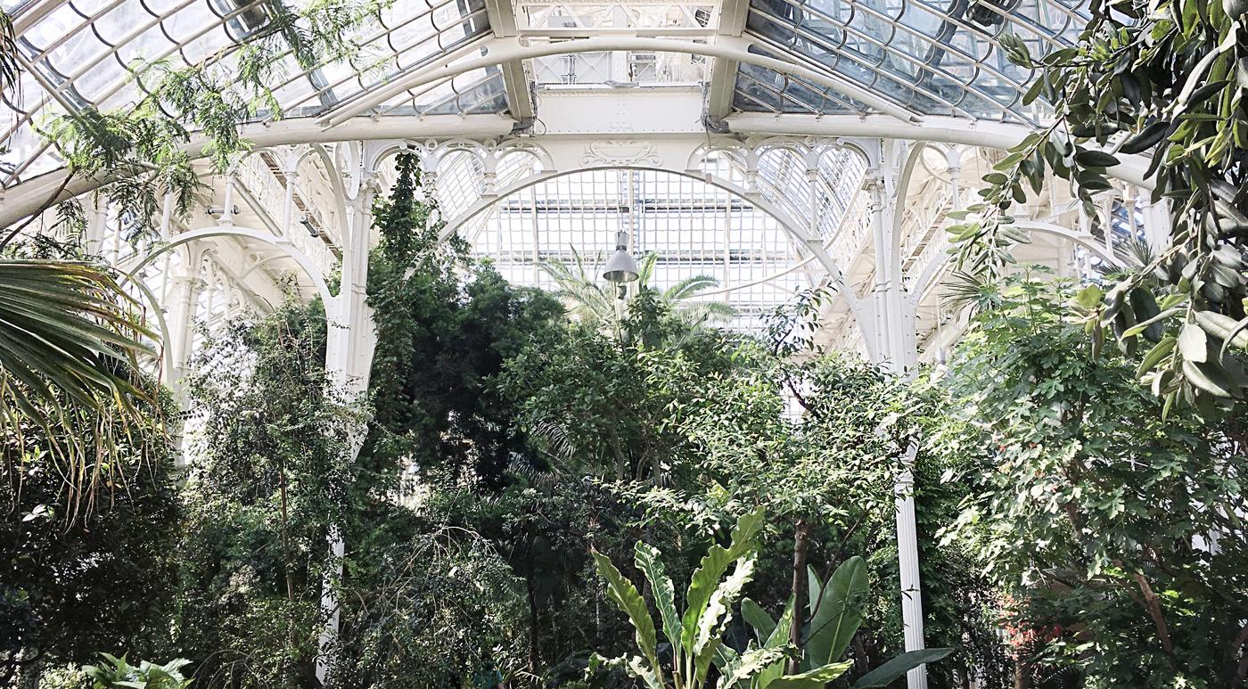 Z wizytą w wiedeńskich ogrodach