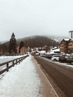 Mountain life / Alabasterfox